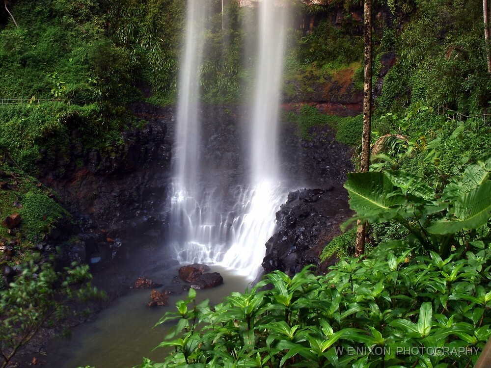 Beautiful Purling Brook Falls  by W E NIXON  PHOTOGRAPHY