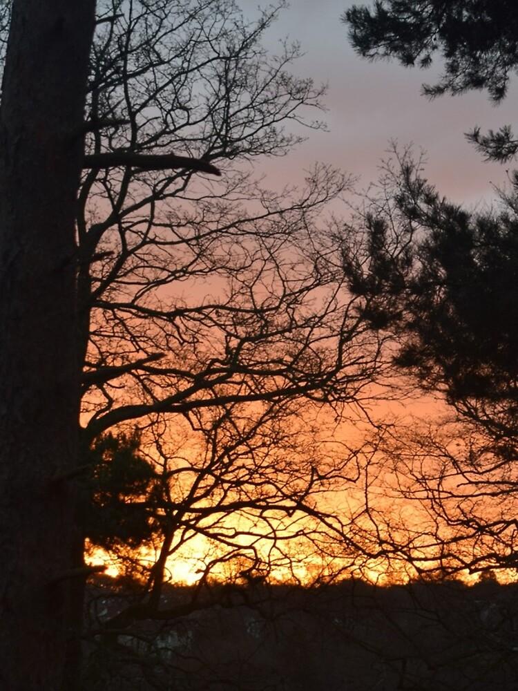 Winter Sunrise in Southampton by krgreen
