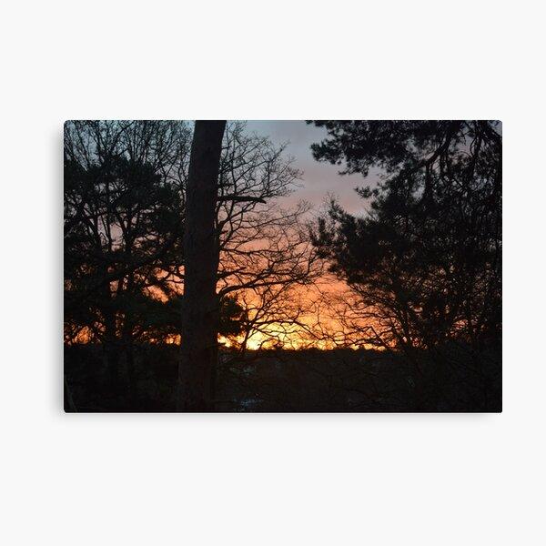 Winter Sunrise in Southampton Canvas Print