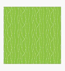 Green floral lines Photographic Print