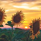 Sunflowers During Sunset by Milan Surbatovic