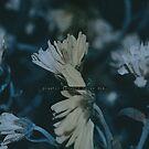Plastic flowers by ghastly
