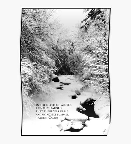 Stinson Brook - Camus Quote Print and Poster Poster