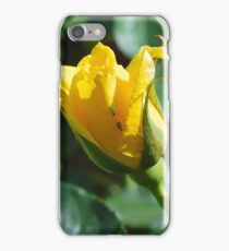 Aphid Races iPhone Case/Skin