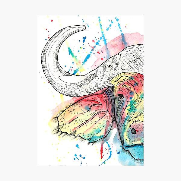 Buffalo Watercolour Photographic Print
