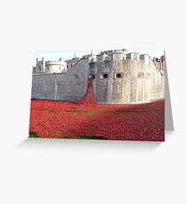 Ceramic Poppies at Tower  of London Greeting Card