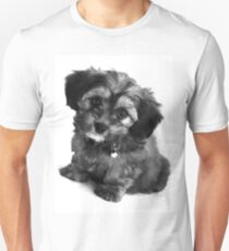 No I did not chew your slippers!!! Unisex T-Shirt