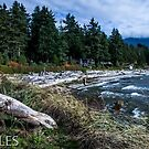 Canada's West Coast by Larry Llewellyn