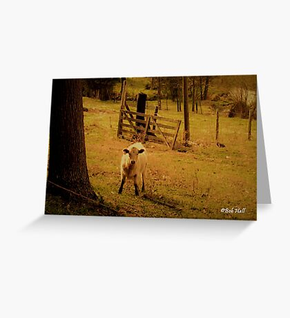 """""""Keeper of the Gate""""... prints and products Greeting Card"""