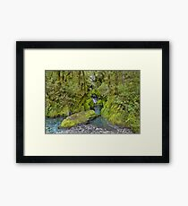 New Zealand Landscape 3 Framed Print