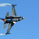 F16 Solo by Bob Martin