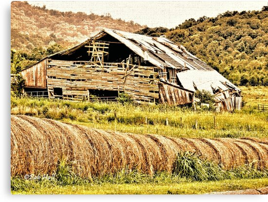 """""""Where Did the Years Go?""""... prints and products by © Bob Hall"""