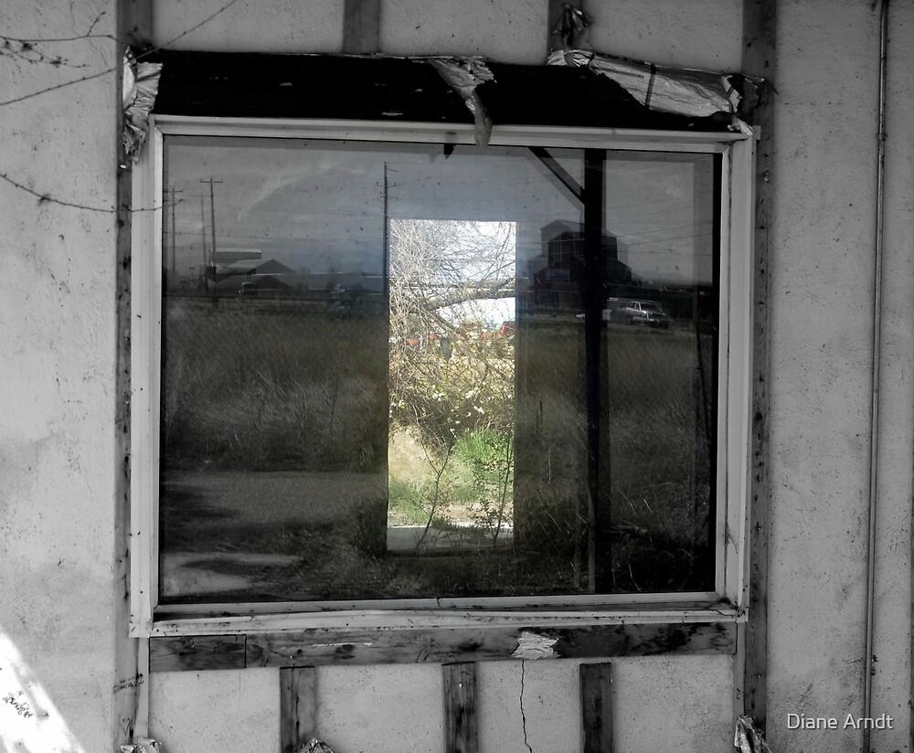 Looking In...Looking Through by Diane Arndt