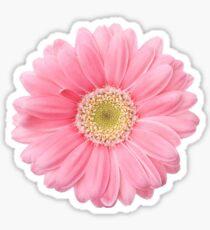 Tumblr pink flower photography stickers redbubble pink flower sticker mightylinksfo