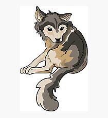 Nymeria Dire Wolf Cub Puppy Photographic Print
