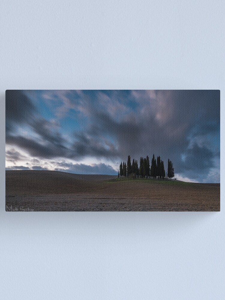 Alternate view of cipressi Canvas Print