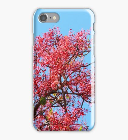 Red Cedar Sky iPhone Case/Skin