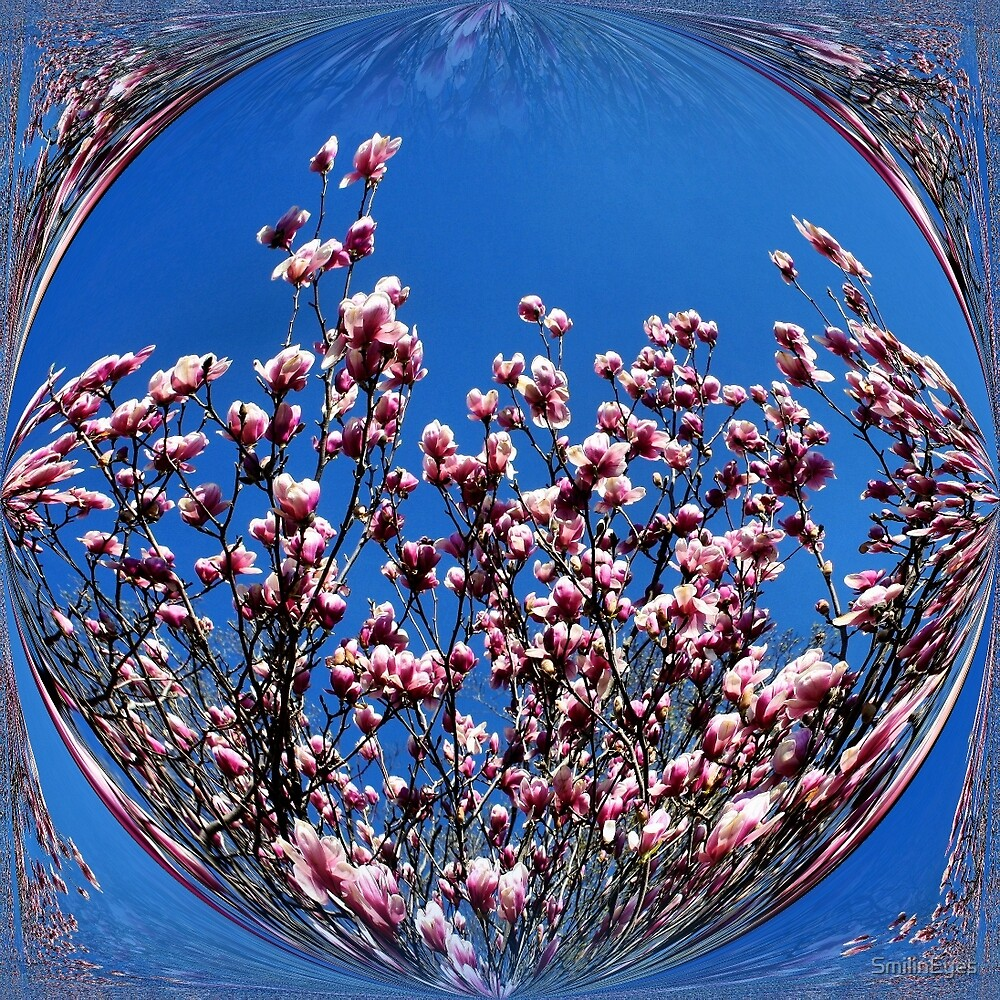 Pink Magnolia Flower Blossoms Abstract Nature Art by SmilinEyes