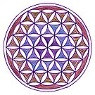 Flower of Life - Quiet Contemplation by Carrie Dennison