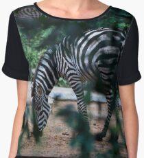 Zebra  Women's Chiffon Top