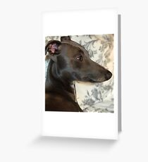 Classic Whippet Greeting Card
