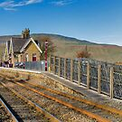 Ribblehead Station by Trevor Kersley