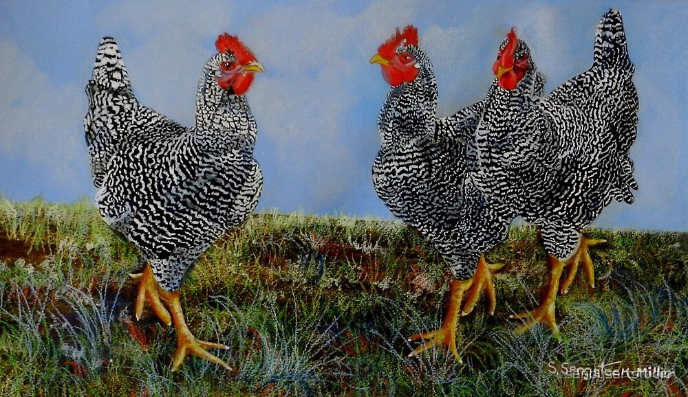 The Farm Chicks by sandysartstudio