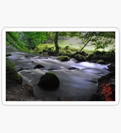Golitha Falls, Cornwall Sticker