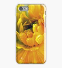 pots of gold iPhone Case/Skin