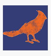 Put a Bird on it 2 Photographic Print