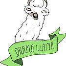 Drama Llama by agrapedesign