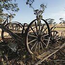 The Old Wagon by Matt Fricker