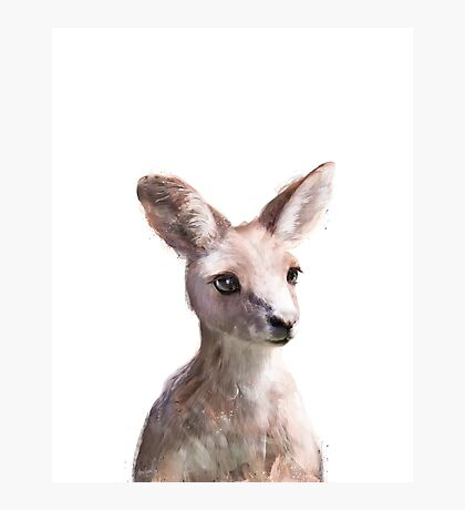 Little Kangaroo Photographic Print