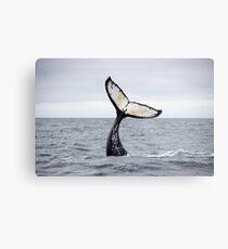 Waving Whale's Tail Metal Print