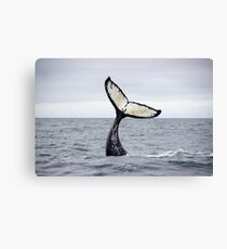 Waving Whale's Tail Canvas Print