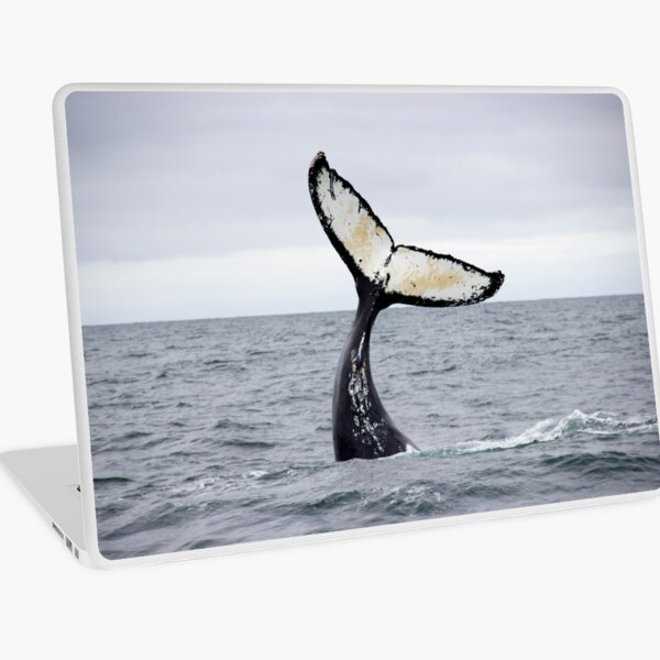 Waving Whale's Tail Laptop Skin