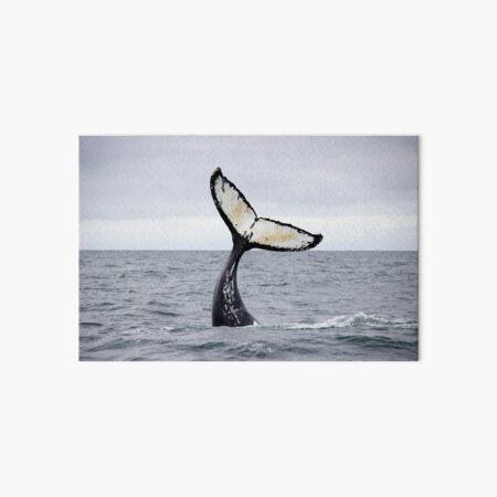 Waving Whale's Tail Art Board Print