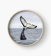 Waving Whale's Tail Clock