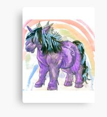 my little shetland pony and rainbow Canvas Print