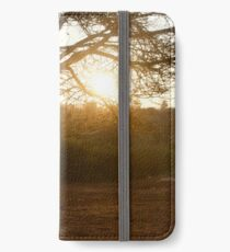 Light through the trees iPhone Wallet/Case/Skin
