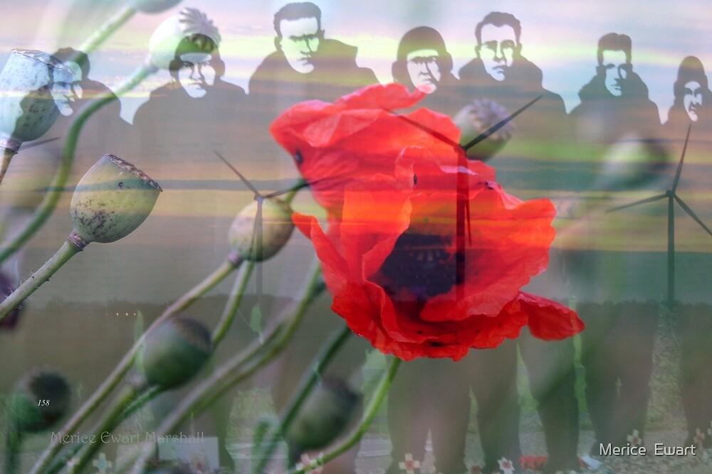 """Lest we forget ""- (ii) by Merice  Ewart-Marshall - LFA"