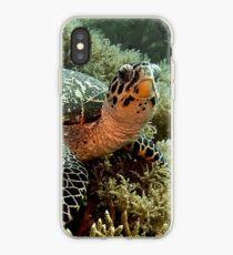 Turtle iPhone Case