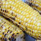 Cob of Corn by TheaShutterbug