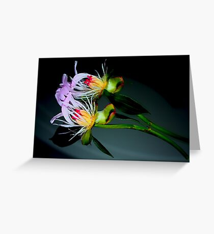 Flipped Greeting Card