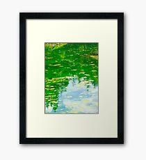 Lake with Algae Framed Print