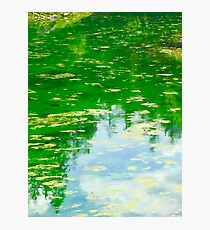 Lake with Algae Photographic Print