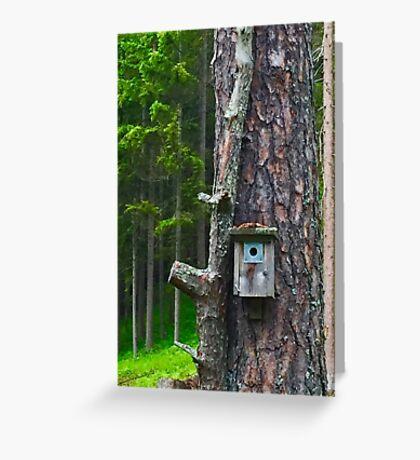 Birdhouse on Tree Greeting Card
