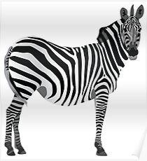Zebra, Graphic Design Poster