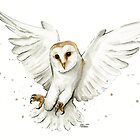 Barn Owl Flying Watercolor by Olga Shvartsur