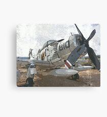 Skyraider Canvas Print